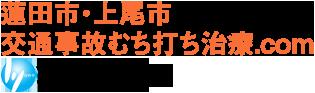 蓮田市・上尾市 交通事故むち打ち治療.com ひかり整骨院